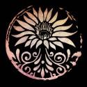 تیشرت Lotus