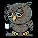 سویشرت هودی Owl I want is Coffee