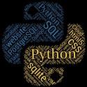 تیشرت Python Programmer